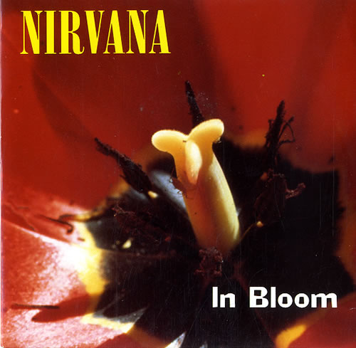 "Capa do single de ""In Bloom""."